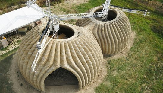 A Wasp Nest Inspired 3D Printed House